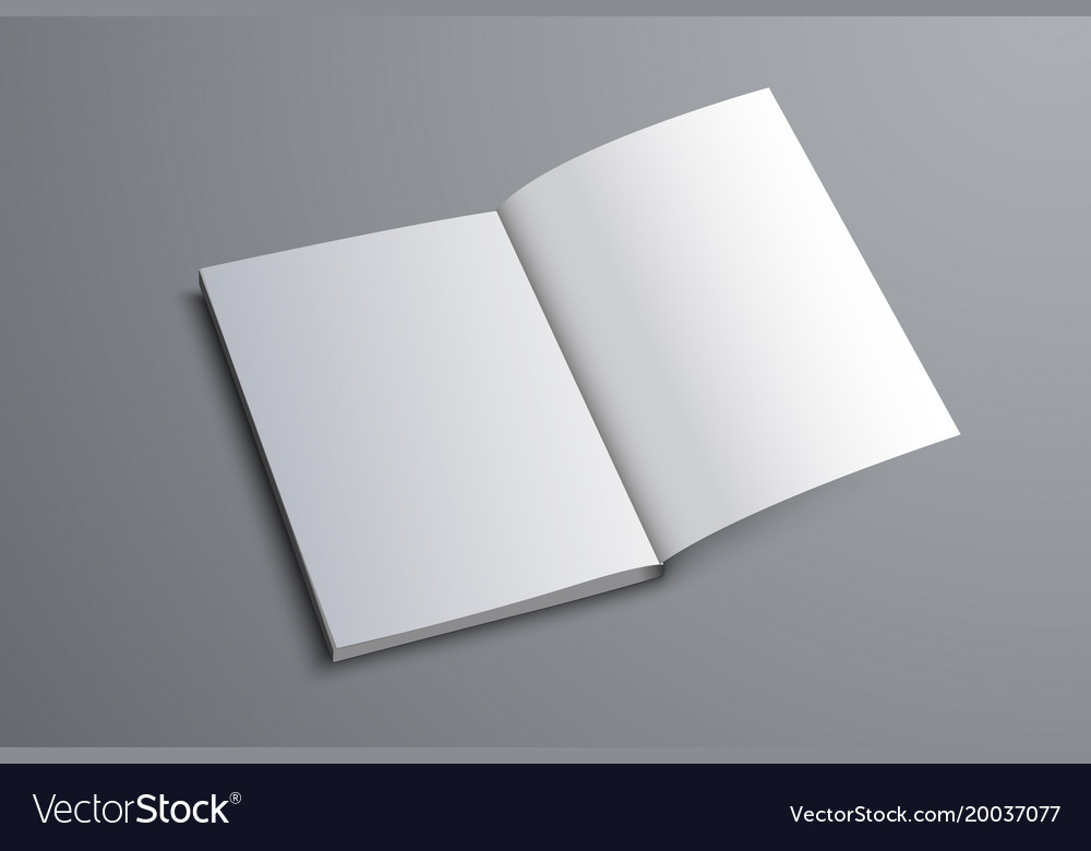 mockup of the a5 or a4 catalog is open on the vector image