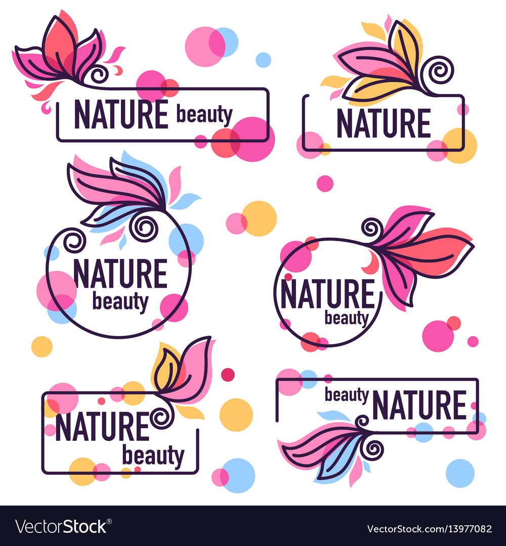 Collection of doodle flowers emblems frames and