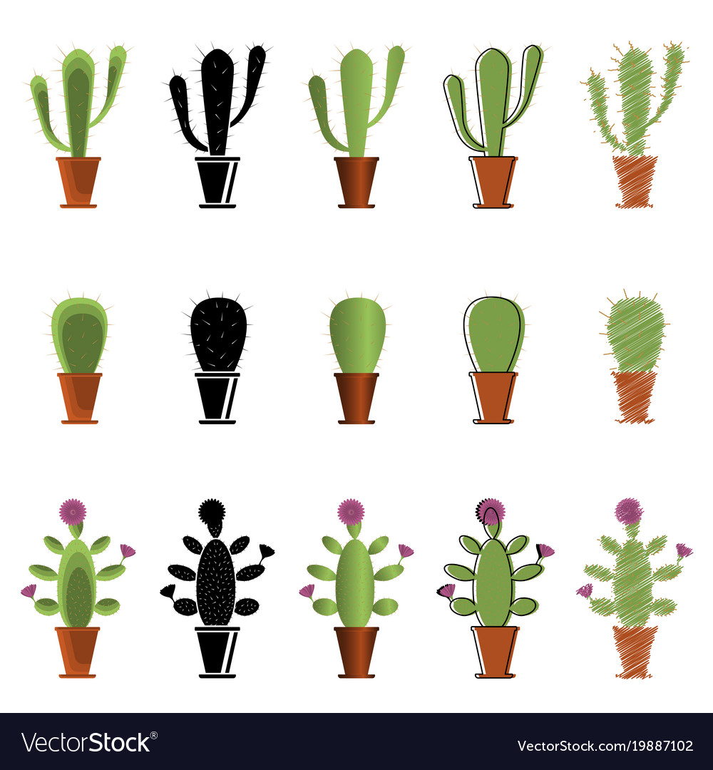 set of cacti in different styles royalty free vector image
