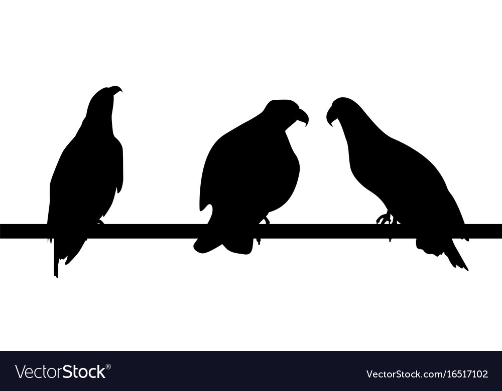 Set of silhouettes of fast living dangerous eagle
