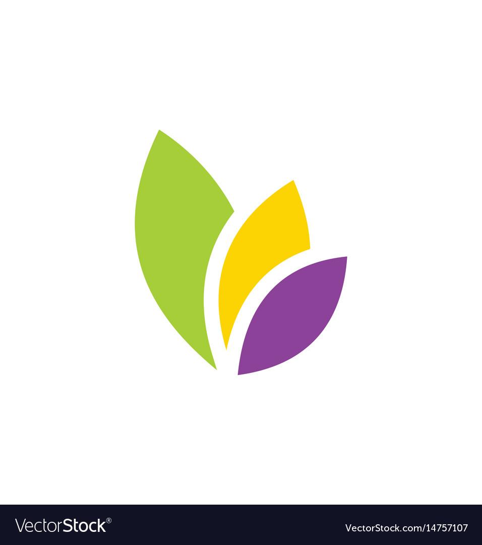 Leaf eco colored logo vector image