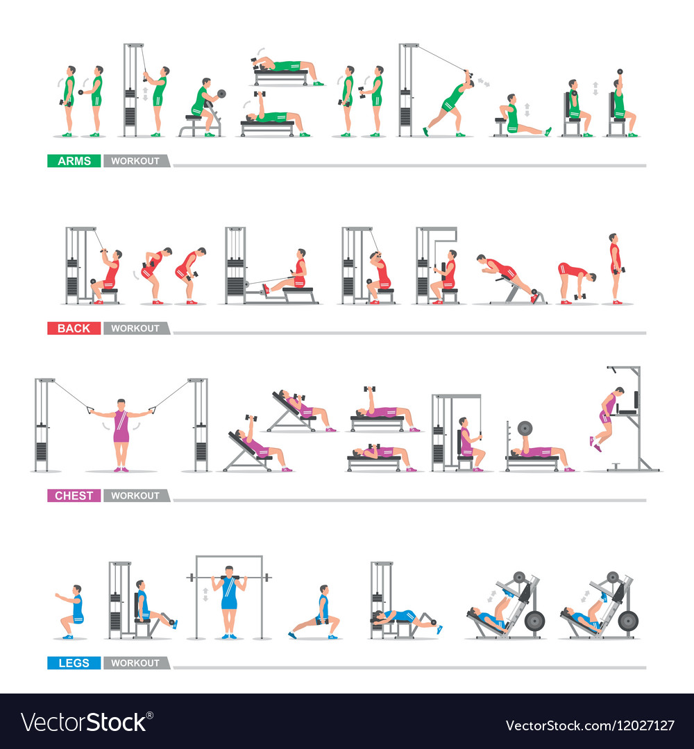 Set of sports exercise vector image