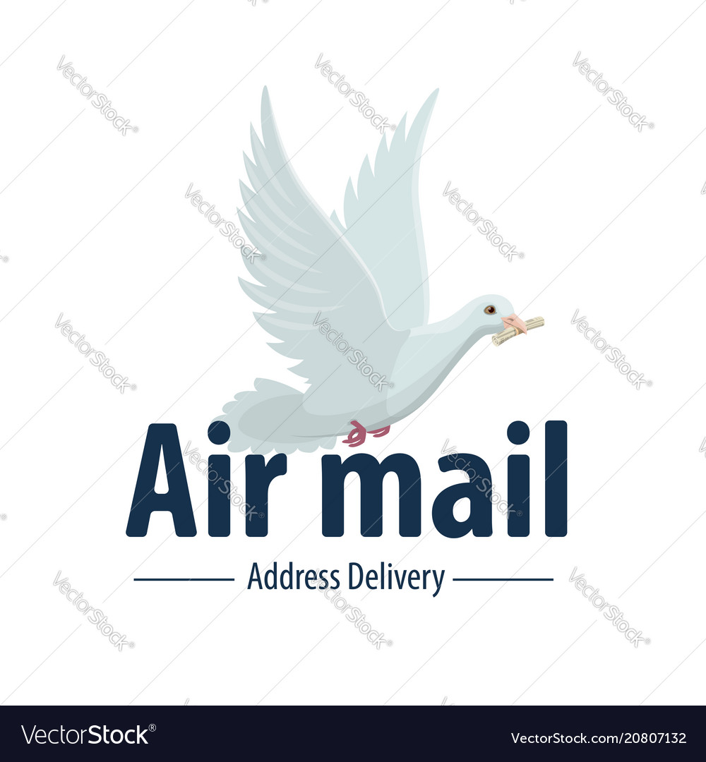 Dove bird air post mail delivery icon