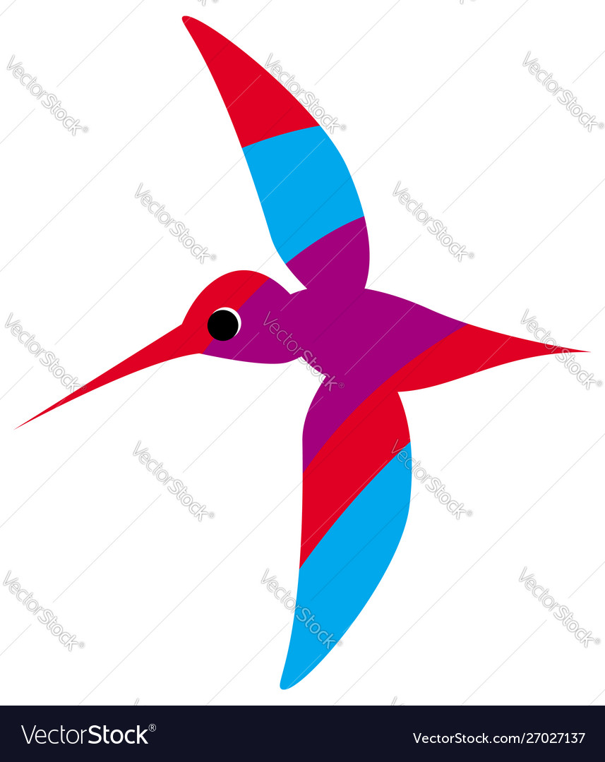 A flying colorful hummingbird or colibri