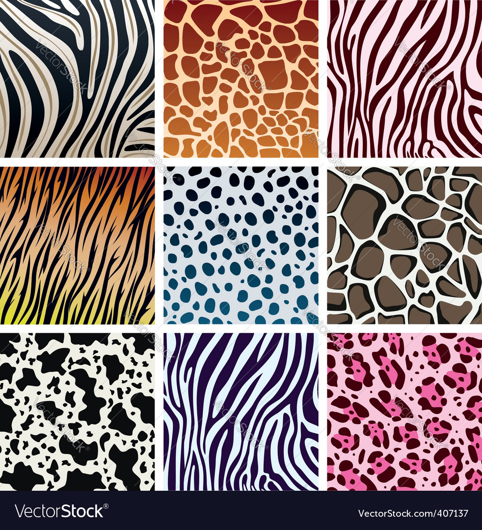 Animal skin textures vector image