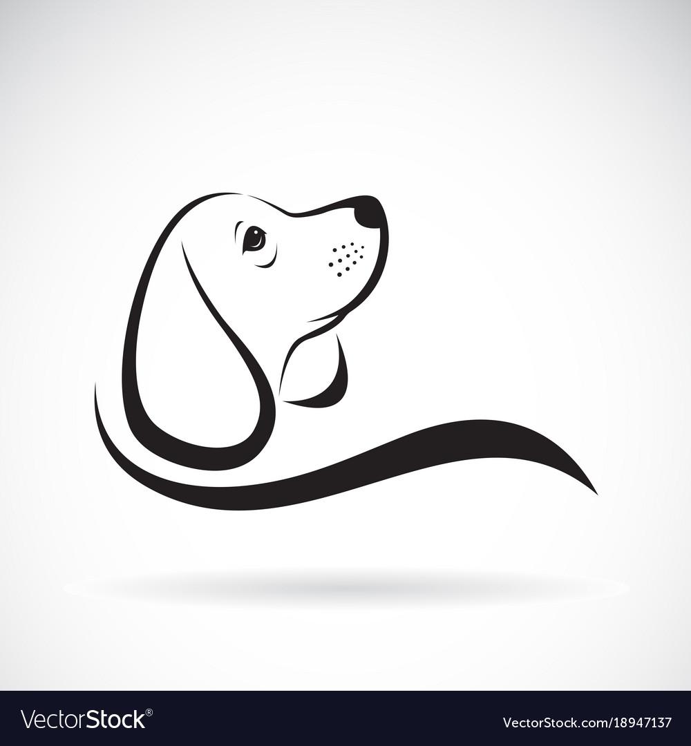 Beagle dog design on white background pet
