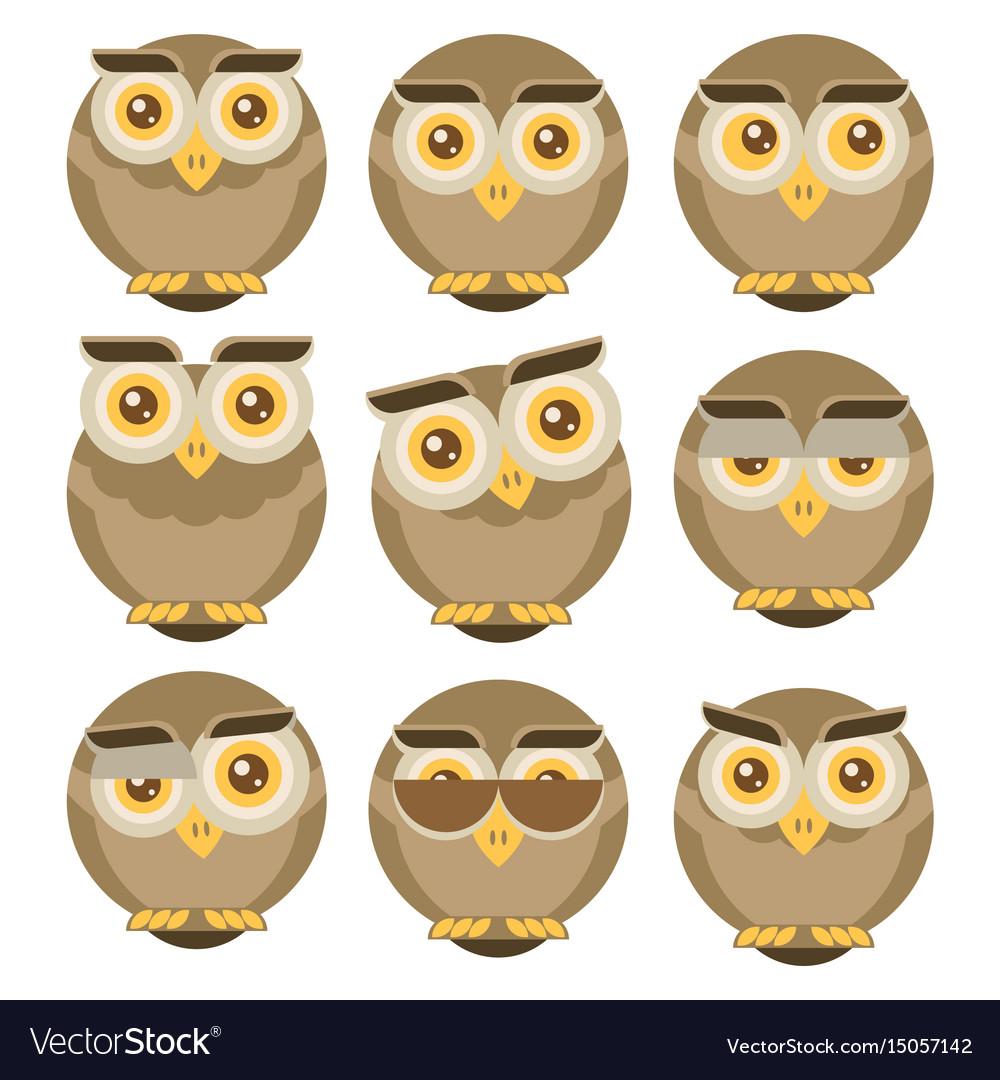 Set of owls isolated on white background flat