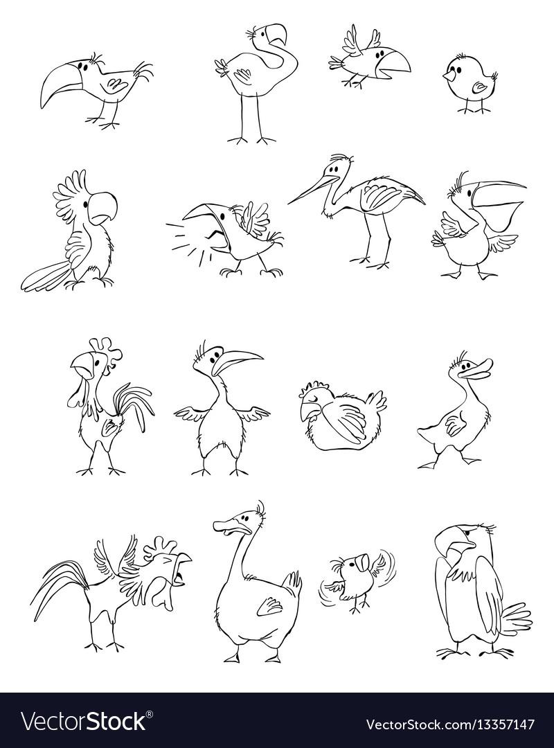 Funny birds set vector image