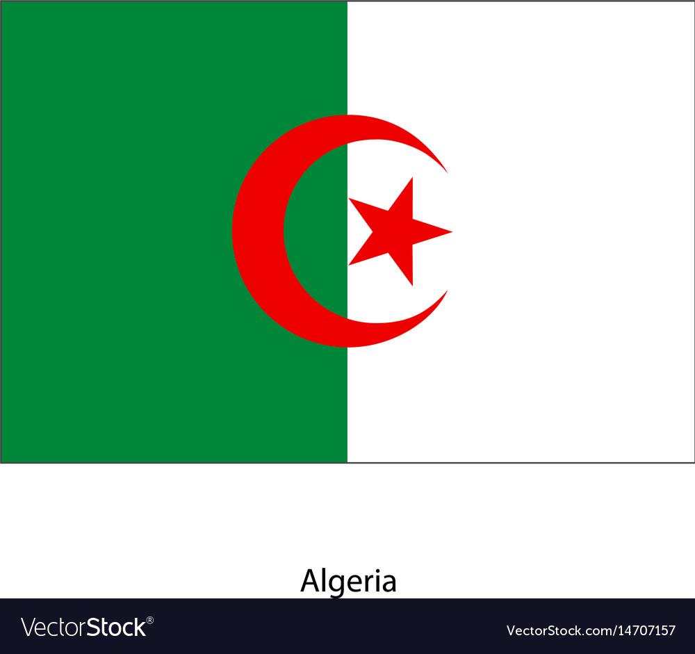 Algeria flag algeria flag
