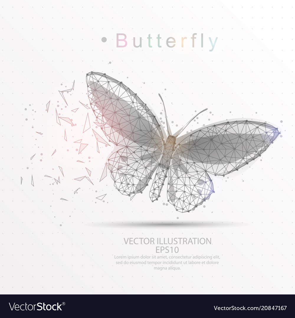 Butterfly digitally drawn low poly triangle wire