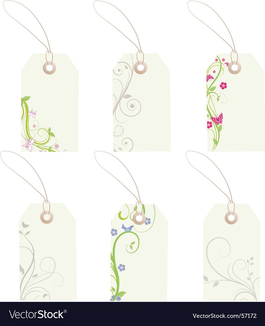 Floral gift tags vector image