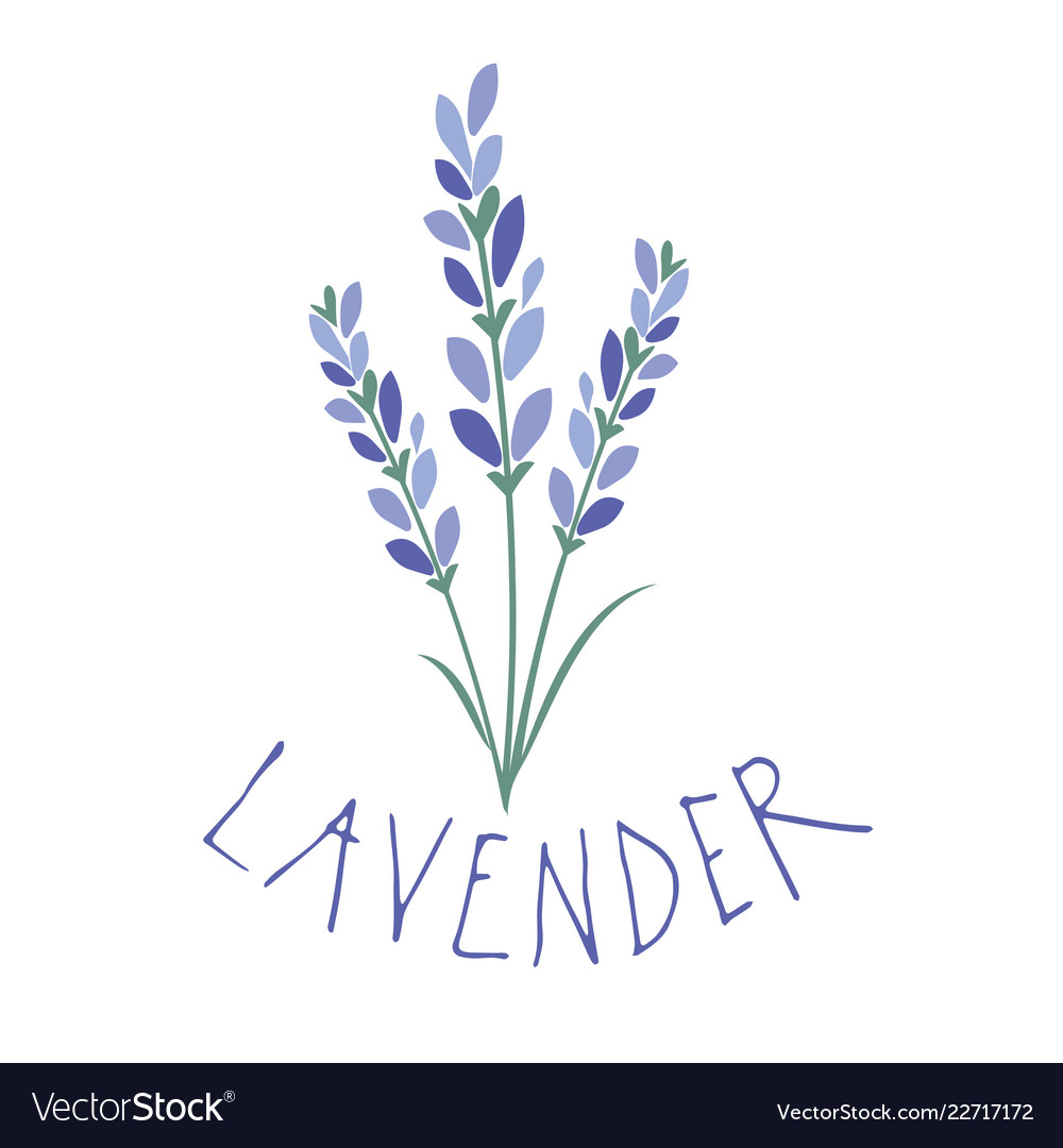 Lavender flower logo design text hand drawn
