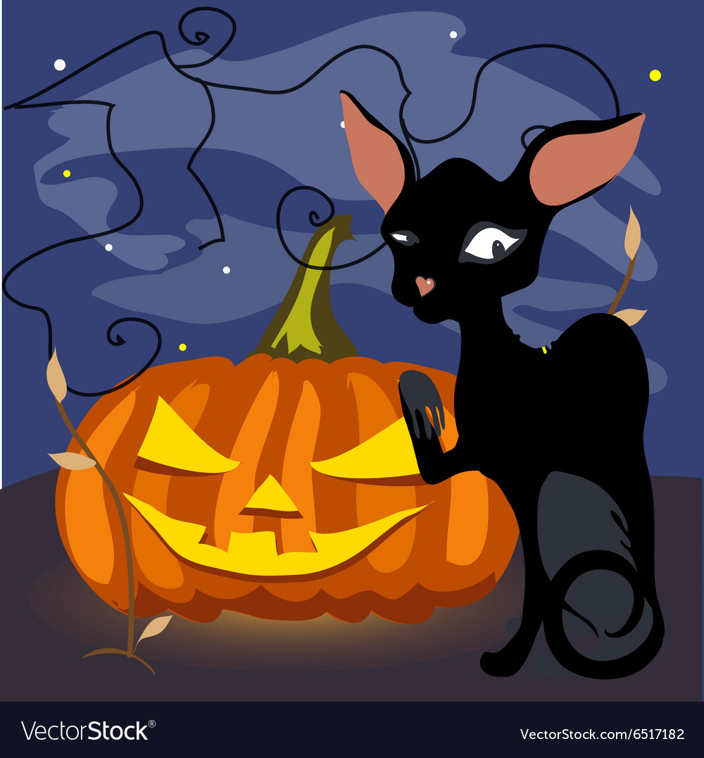 Black cat with a grinning pumpkin