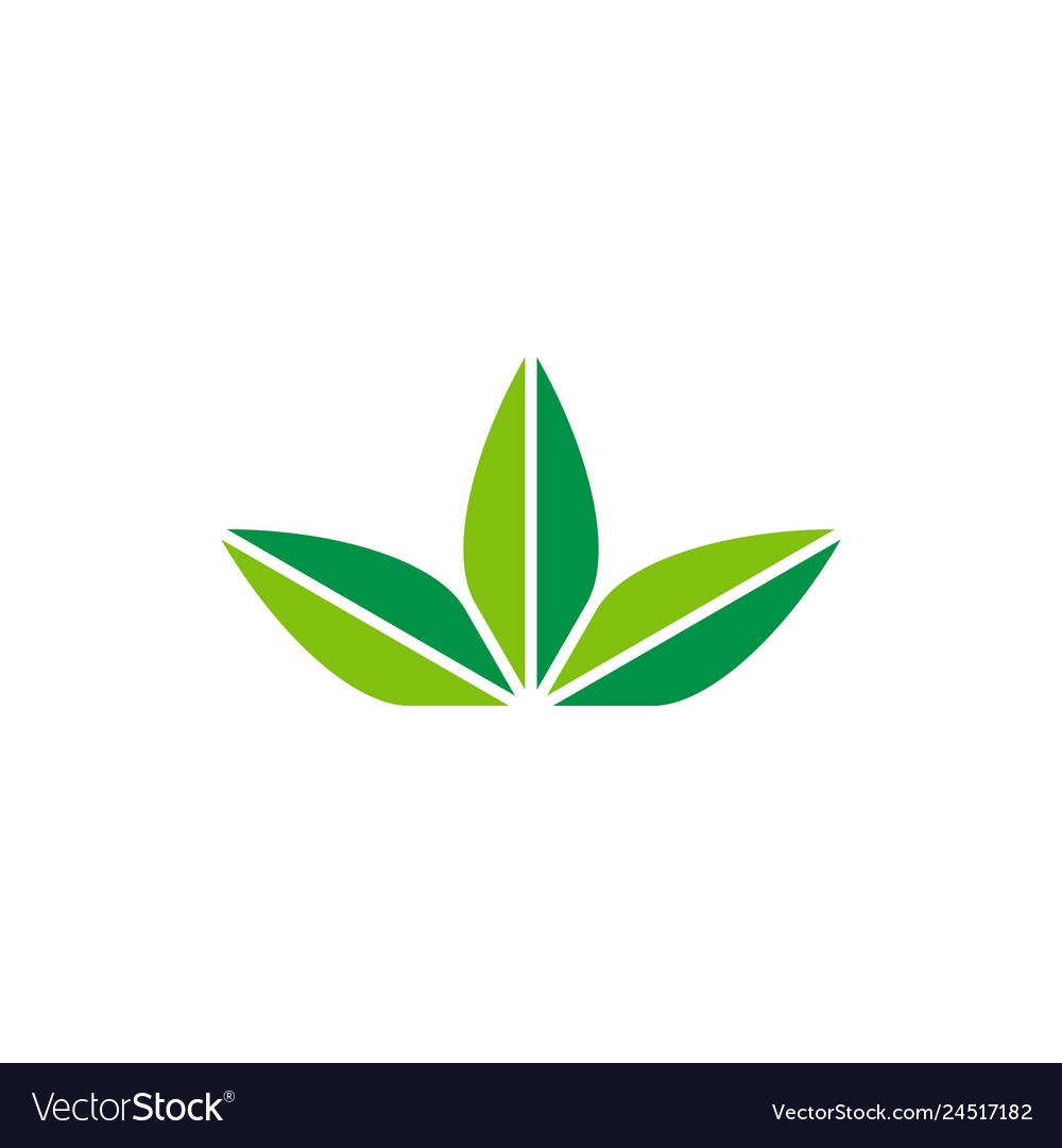 Three leaves logo icon