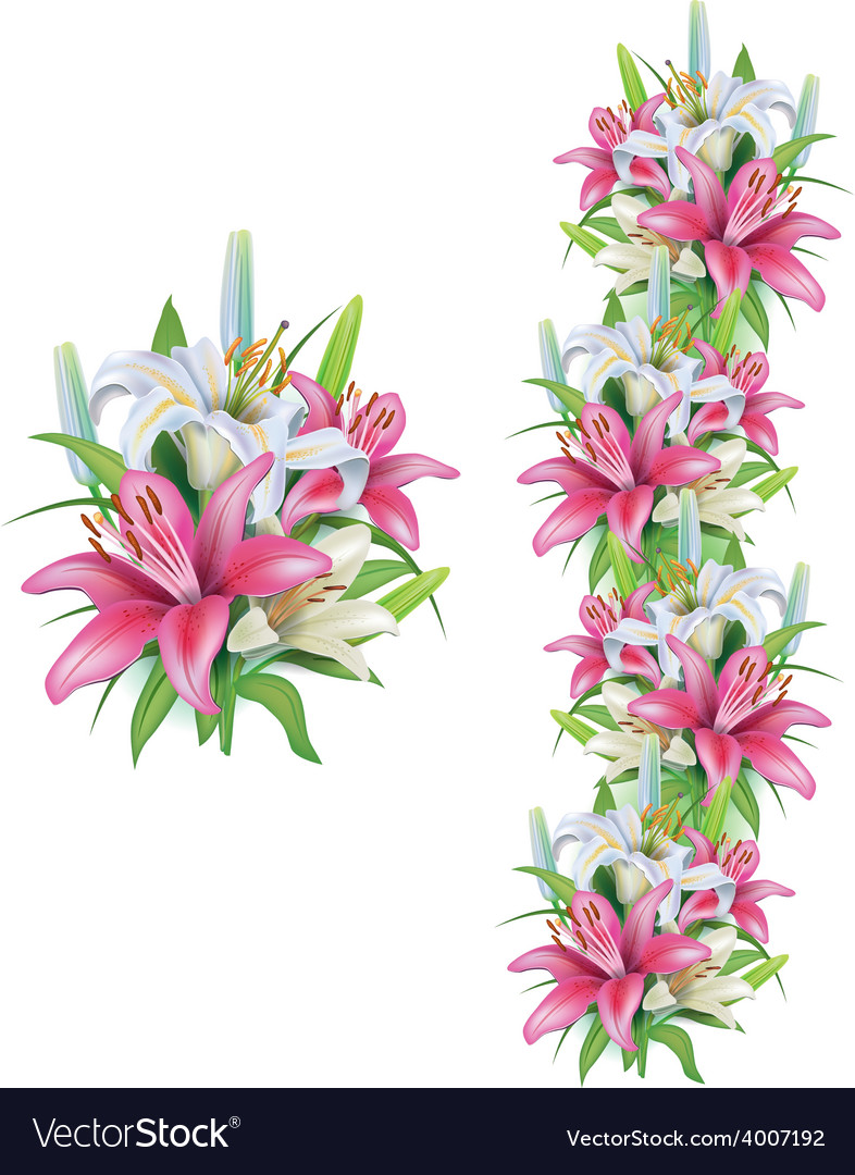 Garlands Of Lilies Flowers Royalty Free Vector Image