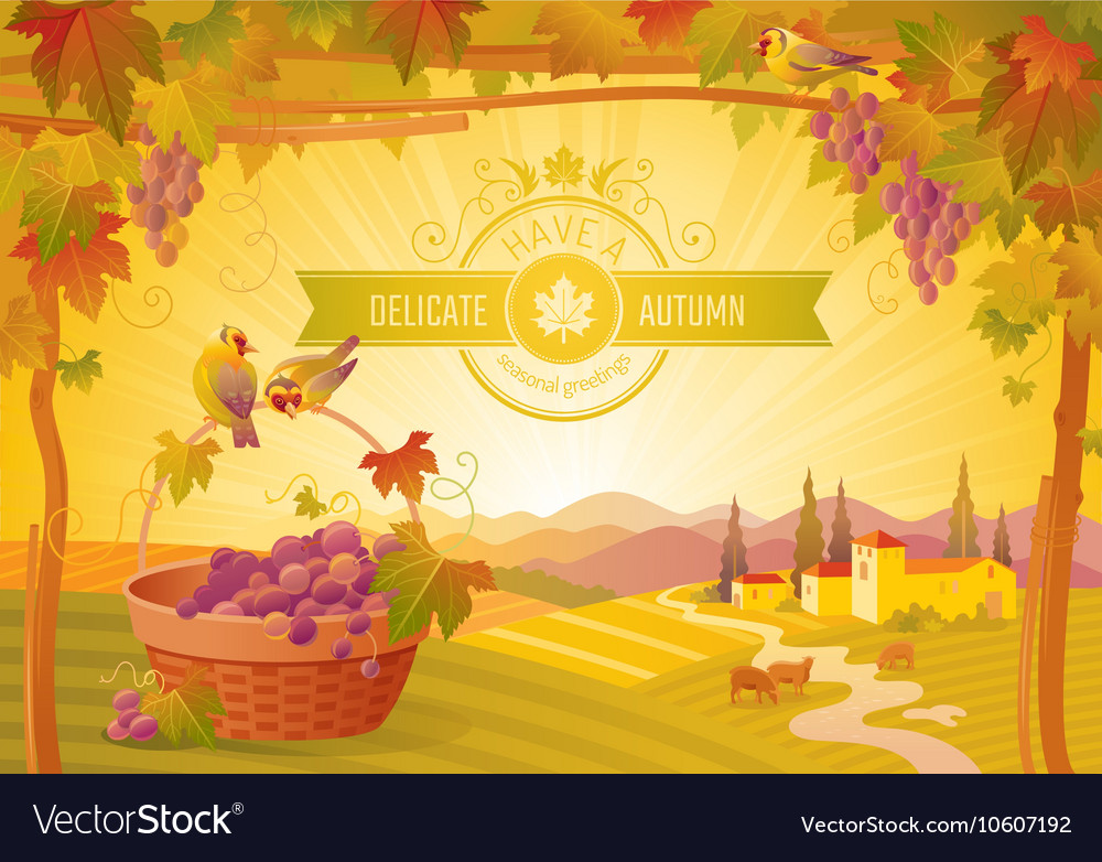 Thanksgiving beautiful autumn vector image