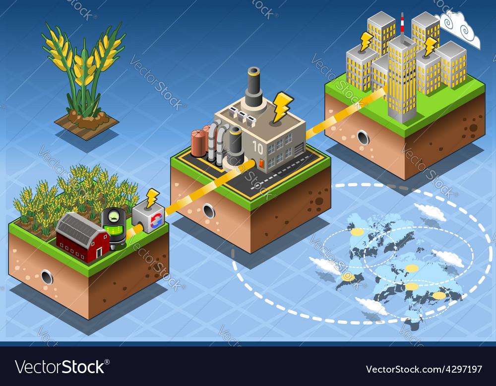 Isometric Infographic Biomass Source Renewable vector image