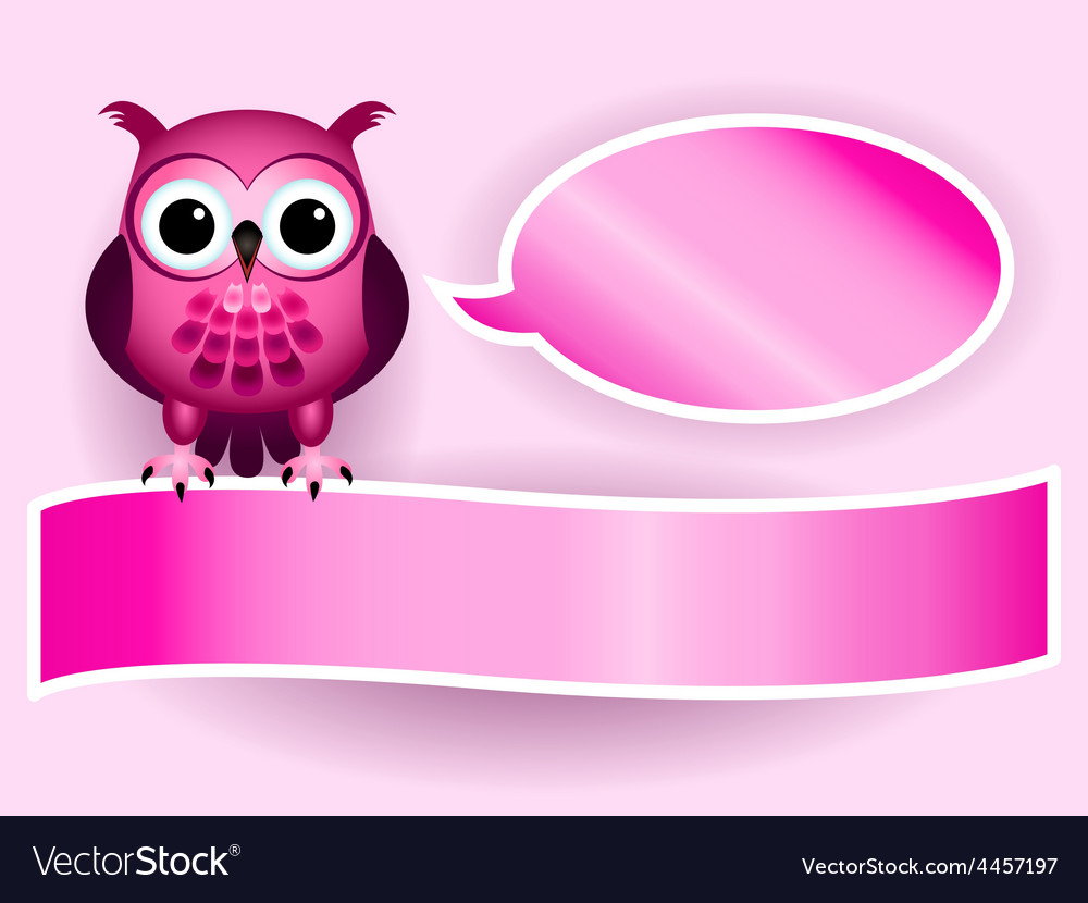 owl making baby girl announcement royalty free vector image