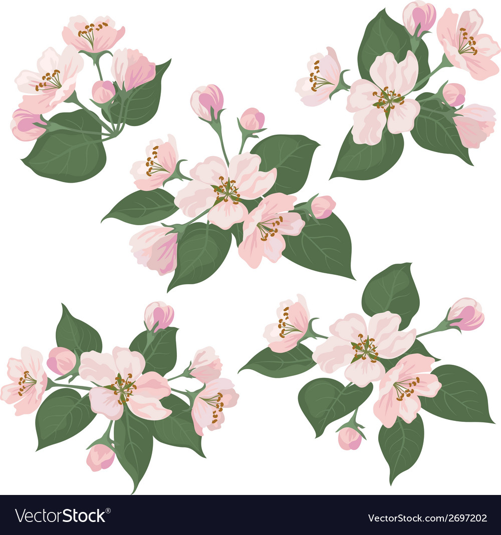 Clip Art Apple Trees in Bloom