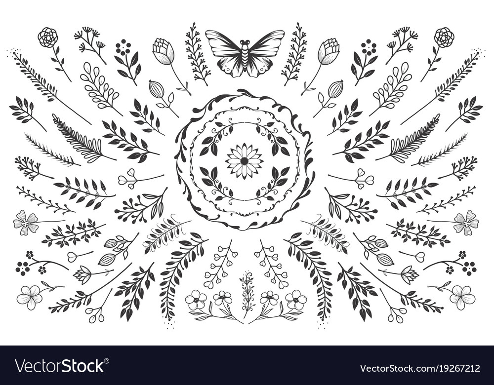 Bloom nature collection vector image