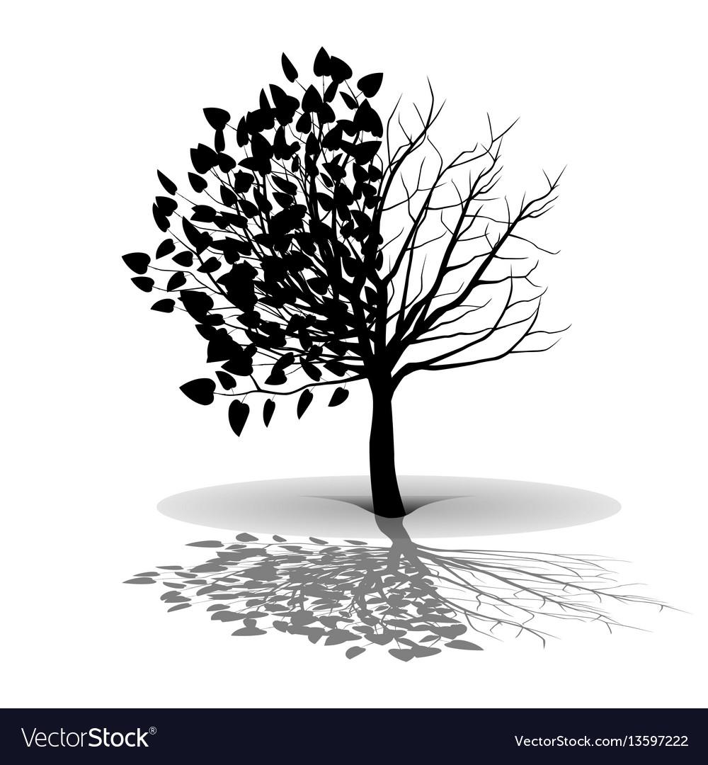 Plant tree silhouette