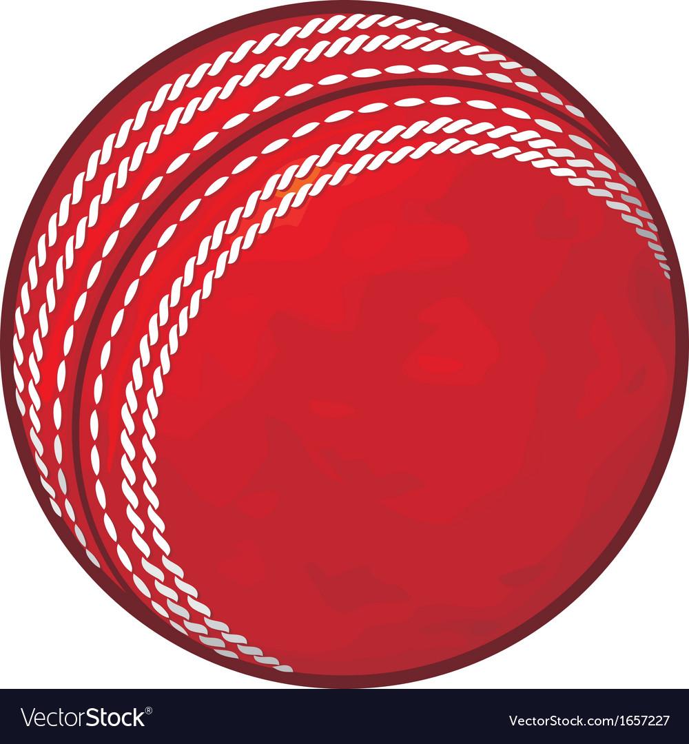 Cricket ball vector image