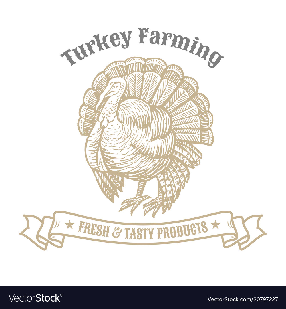 Isolated vintage gold emblem for farm with turkey