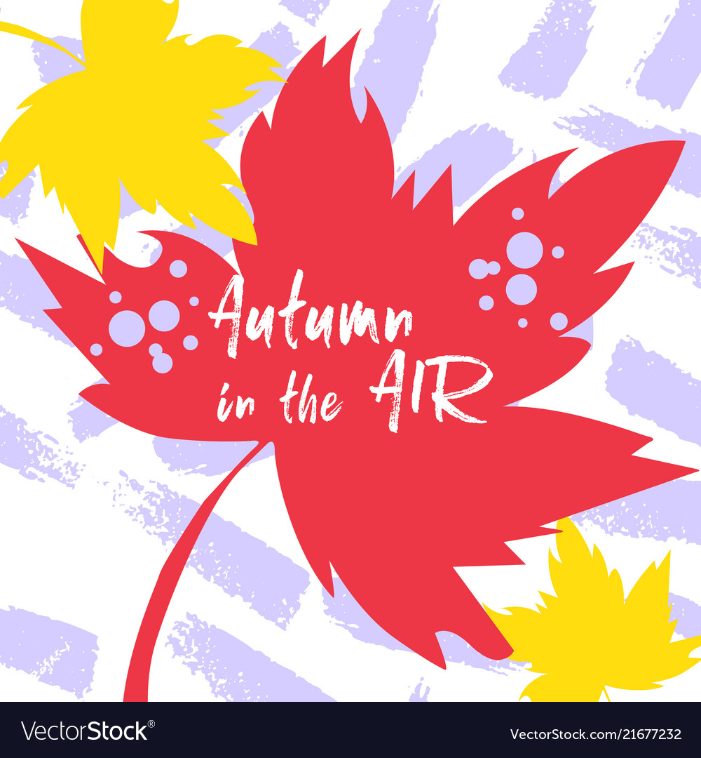 Bright flat fall leaves autumn leaves with text