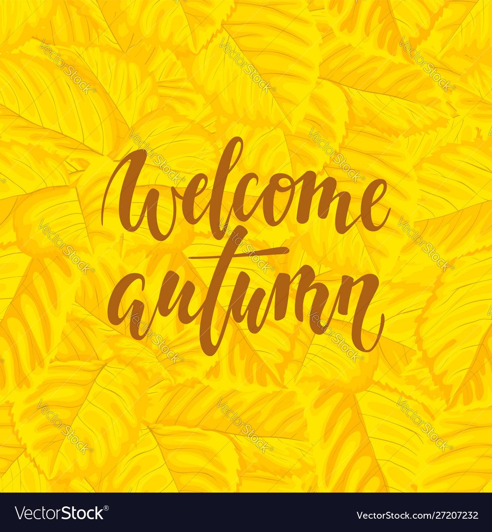 Hello autumn text on yellow background with fall