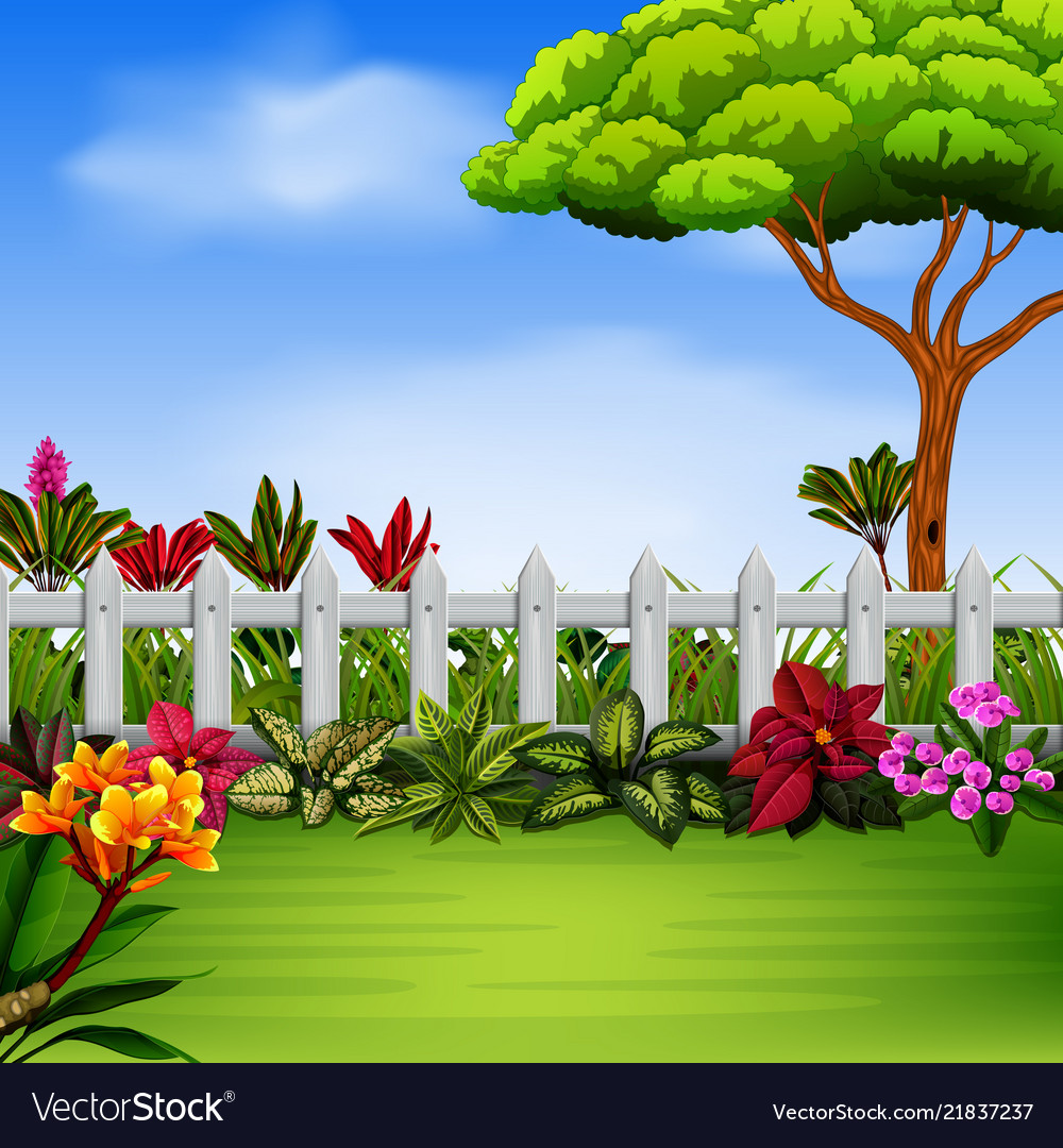 Beautiful garden with the fance and flowers vector image izmirmasajfo