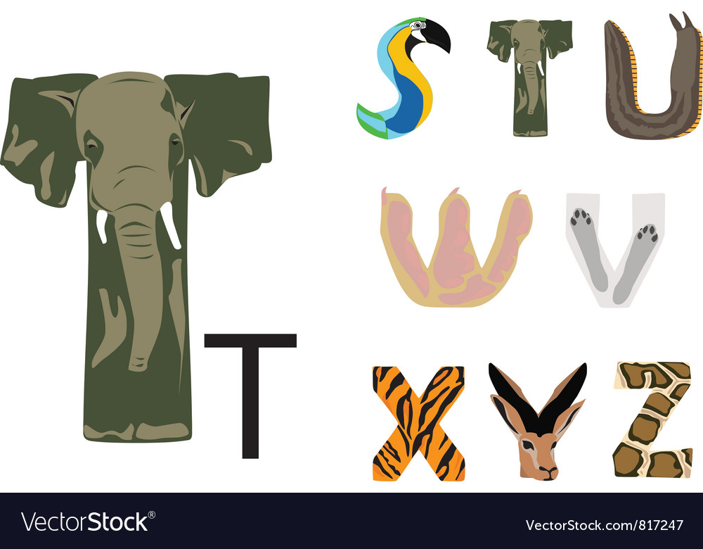 Abc of wild animals