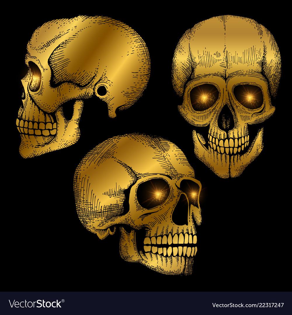 Hand drawn death scary human golden skulls