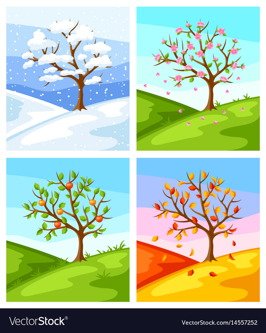 Four seasons of tree and landscape