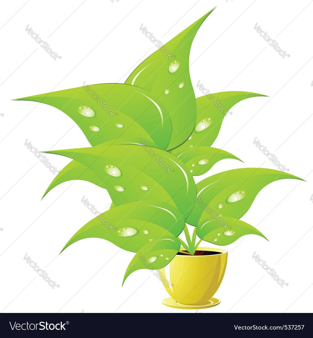 Green Flower In A Yellow Flower Pot Illustration V