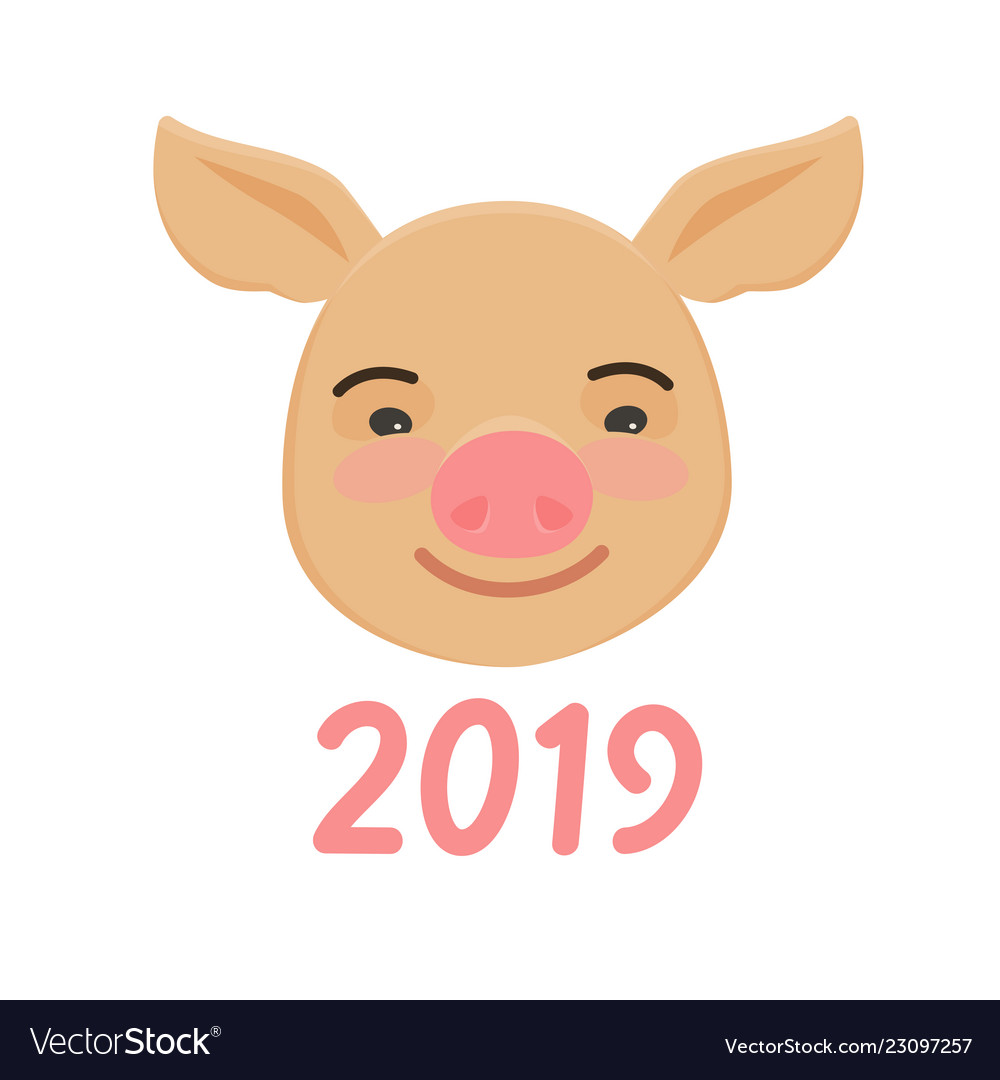 Happy chinese new year of pig cute funny piggy