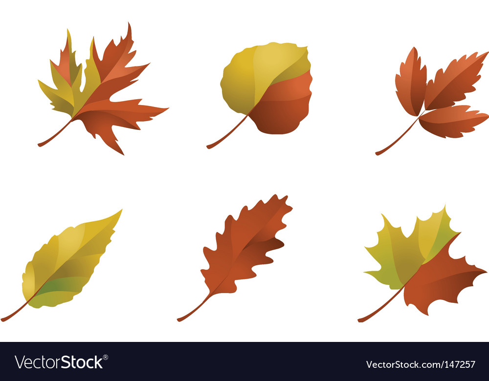 Nature logos 09 autumn leaves vector image