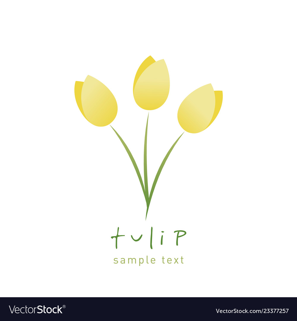 Simple and stylized tulip flowers isolated on