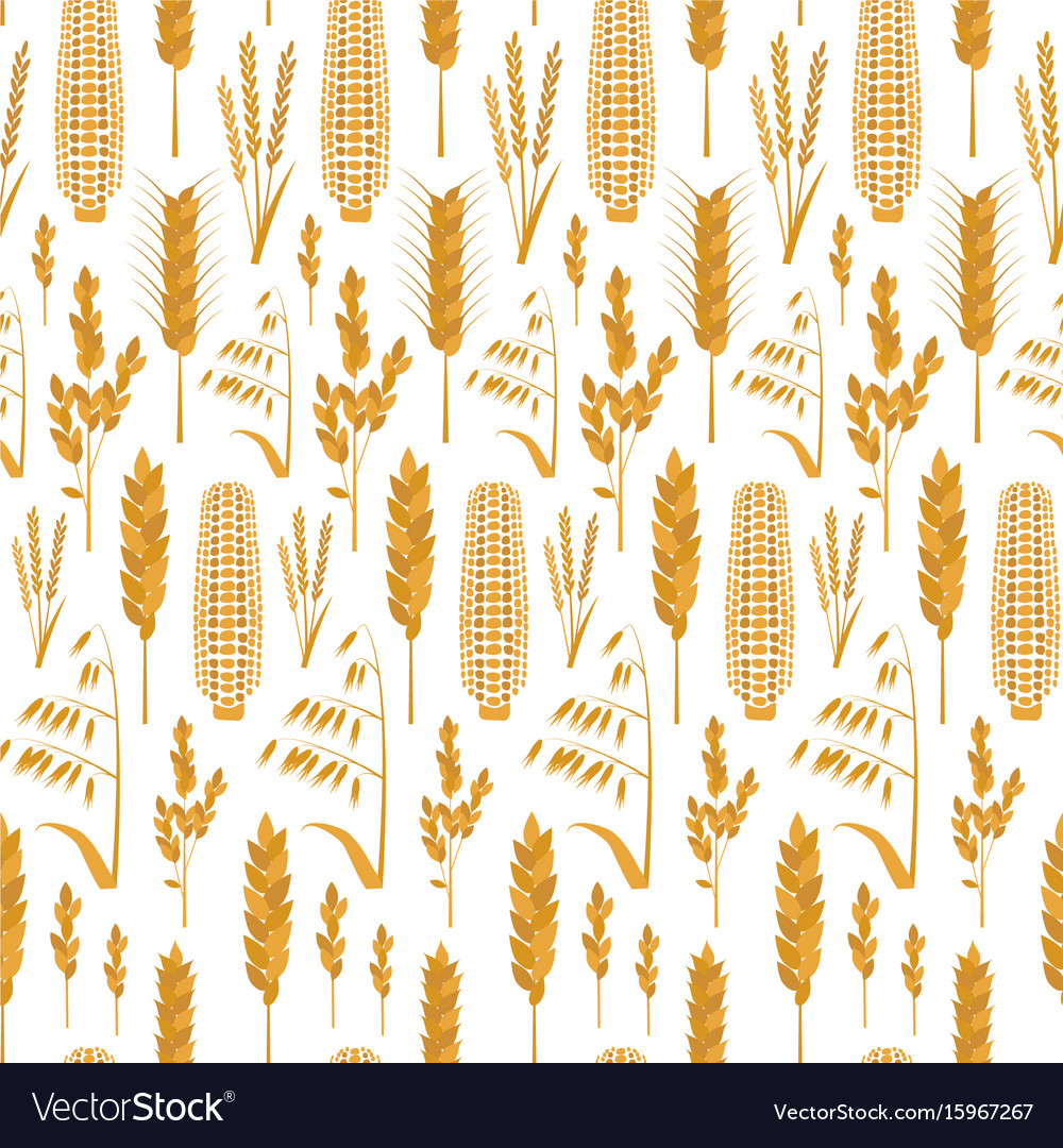 grain background - Monza berglauf-verband com