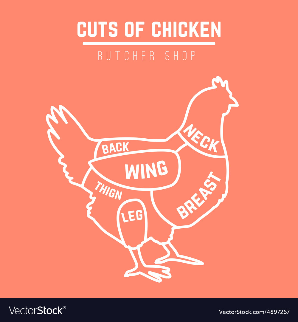Cuts Of Chicken Butcher Diagram Royalty Free Vector Image Leg Detailed Wing