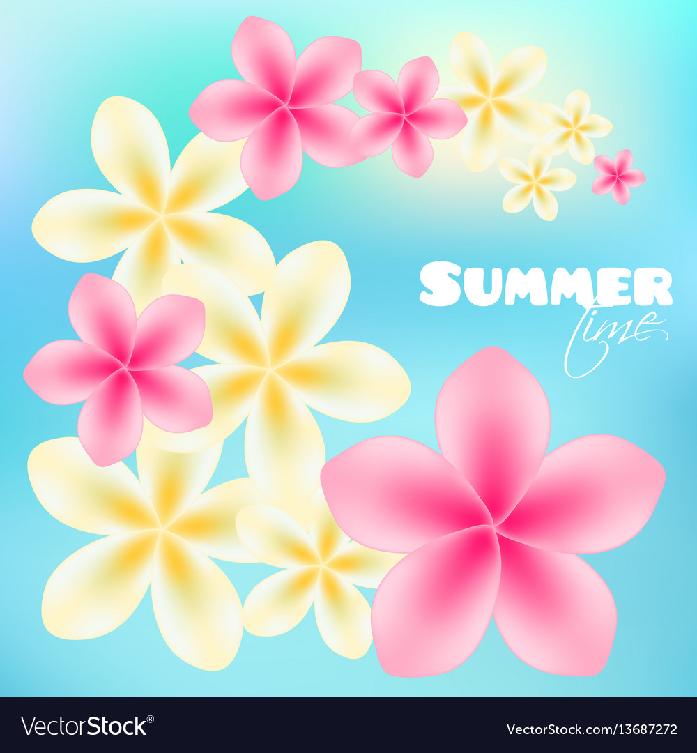Summer time poster background with bright tropical