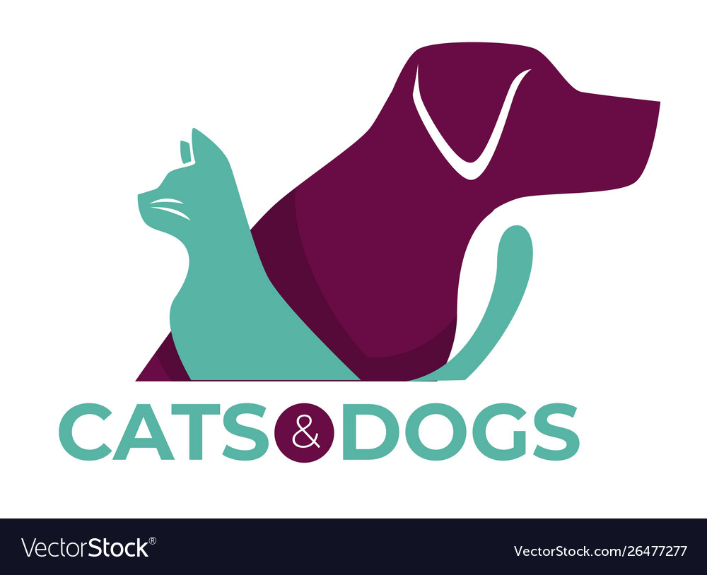 Cats and dogs vet clinic pets shop or shelter