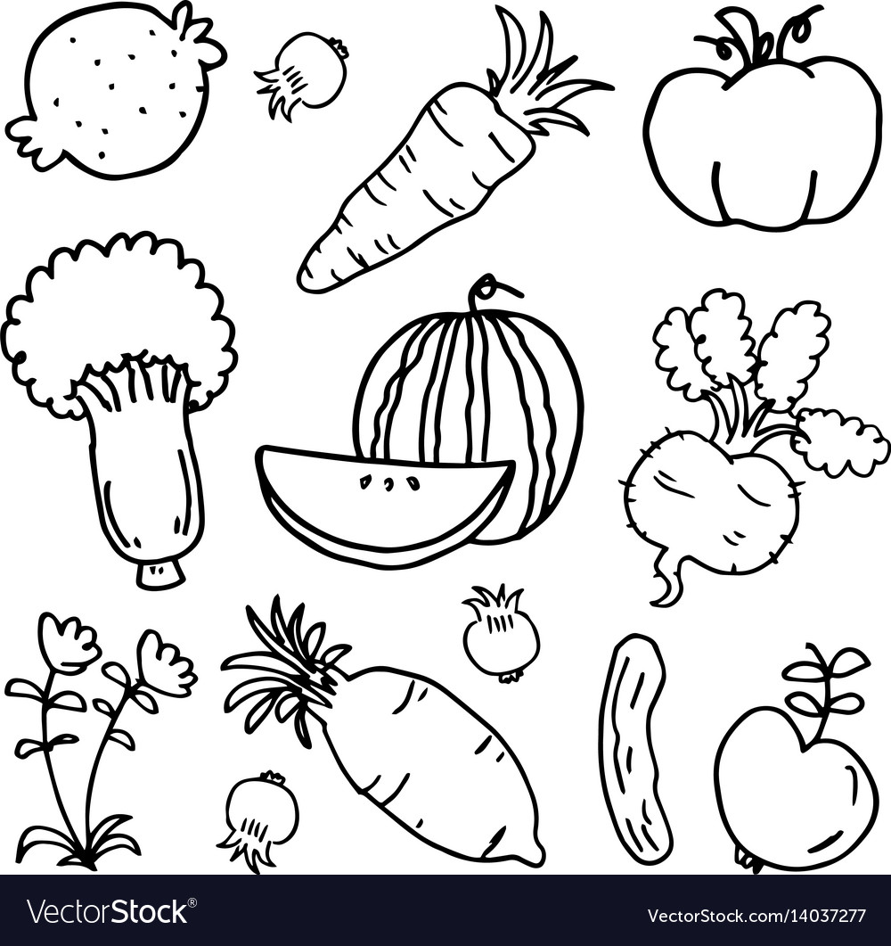 Doodle of vegetable and fruit