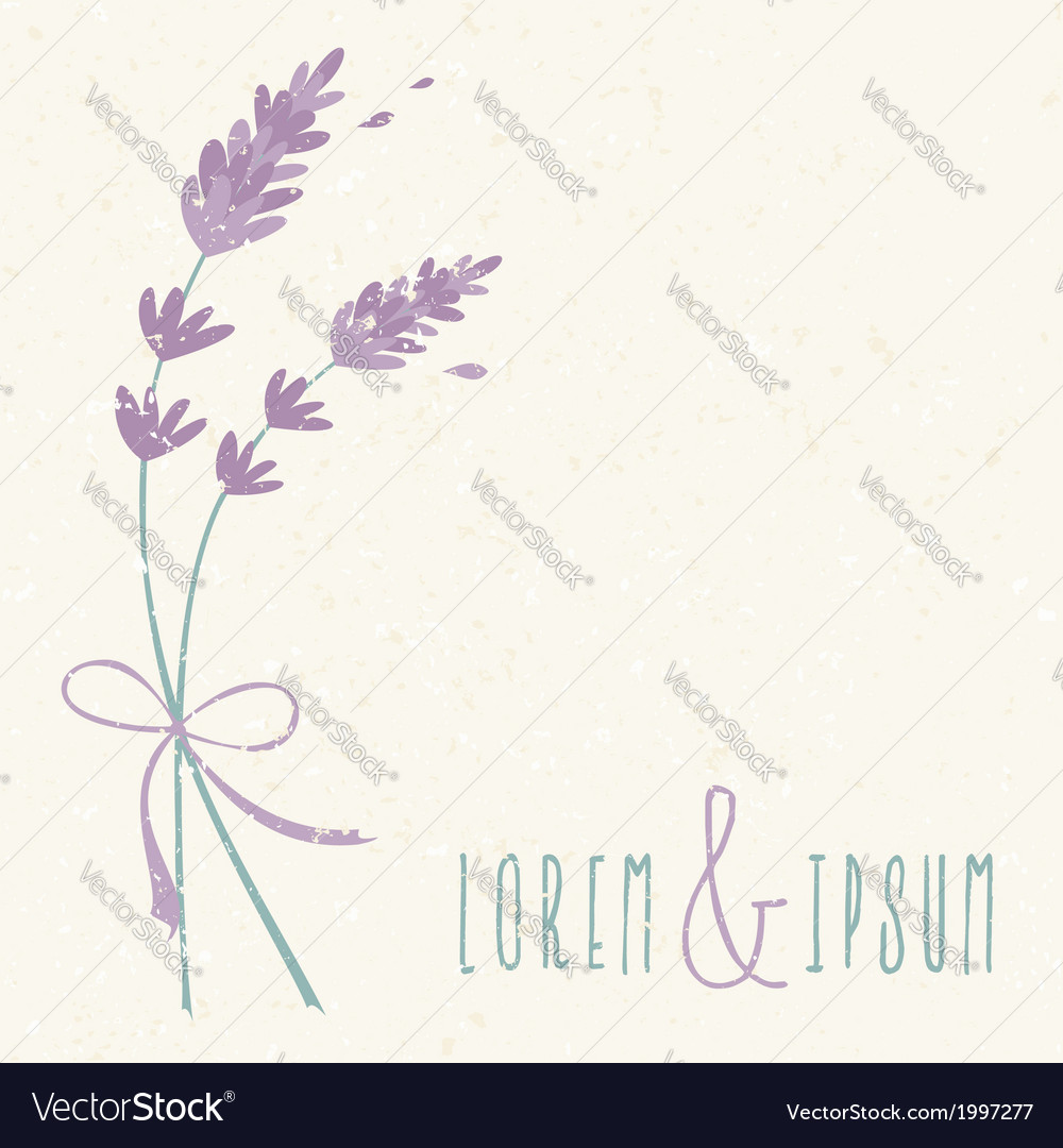 Wedding day design invitation lavender flowers Vector Image