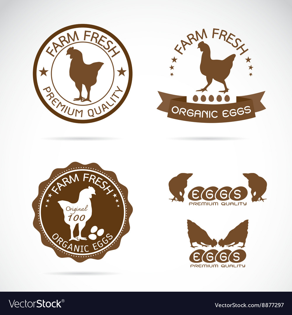 Set of an chicken and eggs label