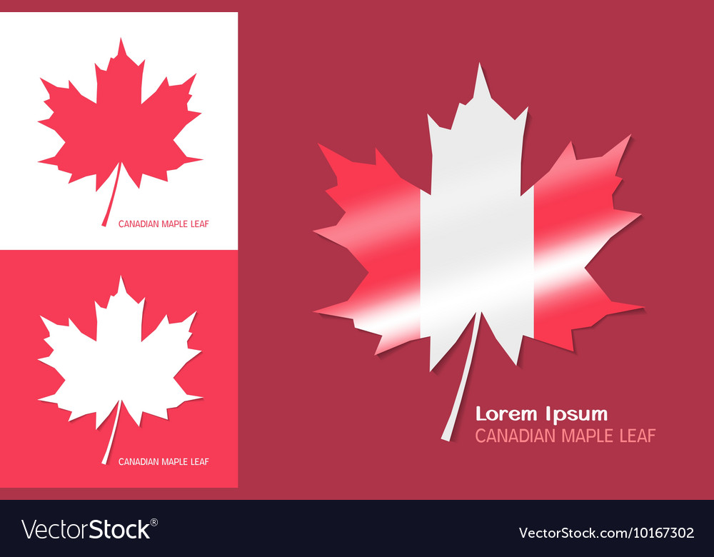 Canadian Maple Leaf Symbol Royalty Free Vector Image