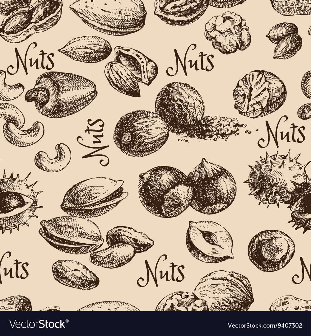 Vintage hand drawn sketch nuts seamless pattern