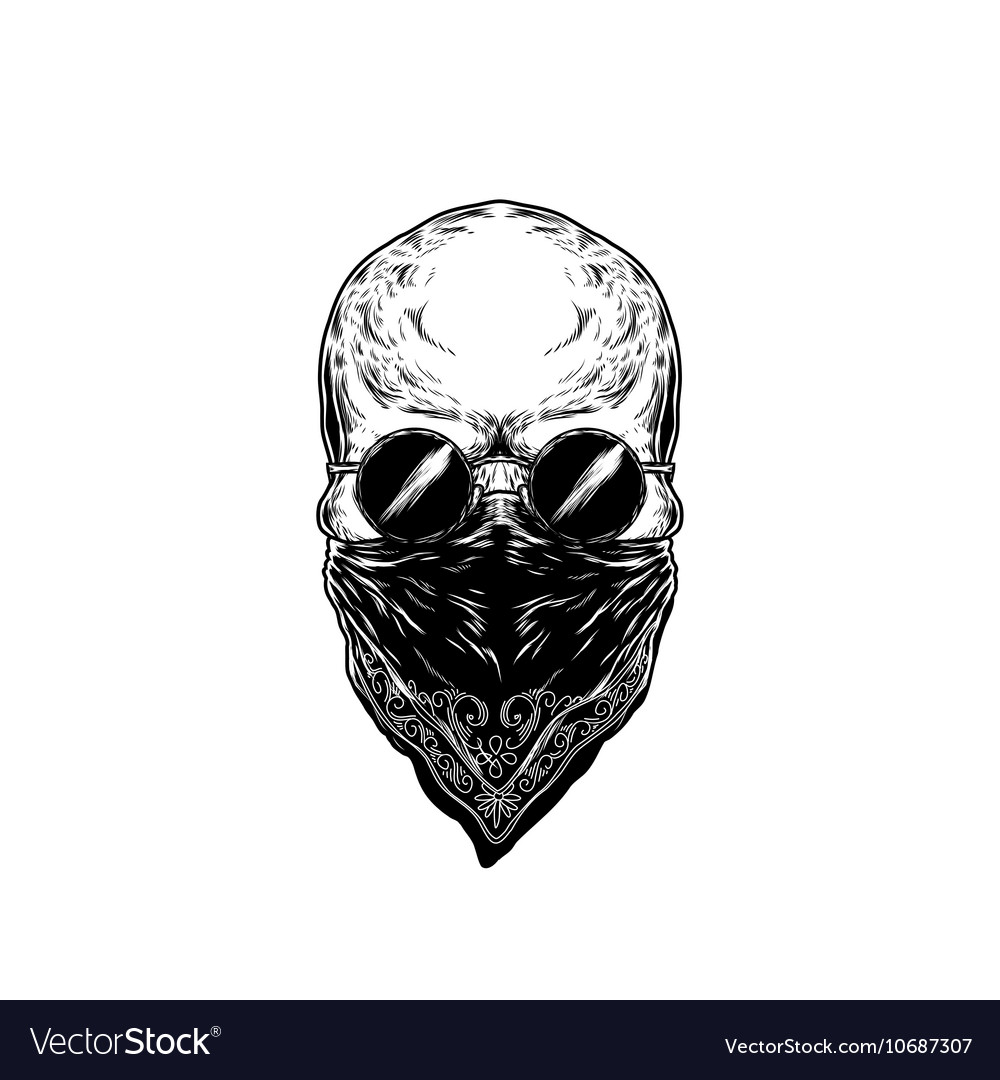 Human skull with glasses