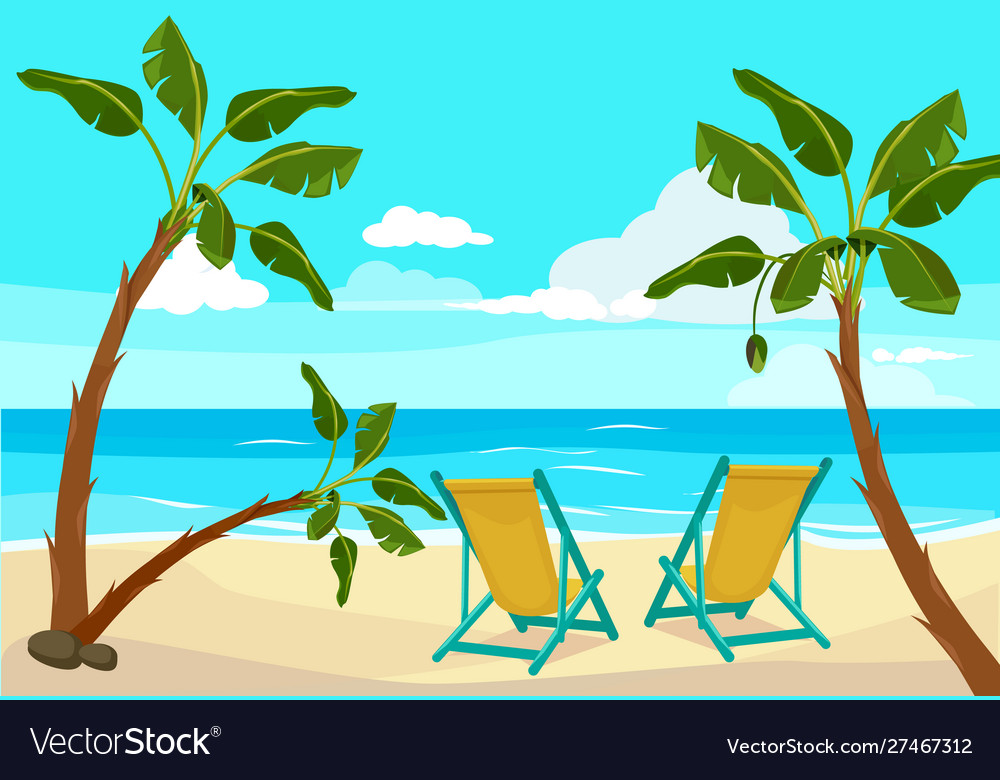 Beach palm tree summer background seaside