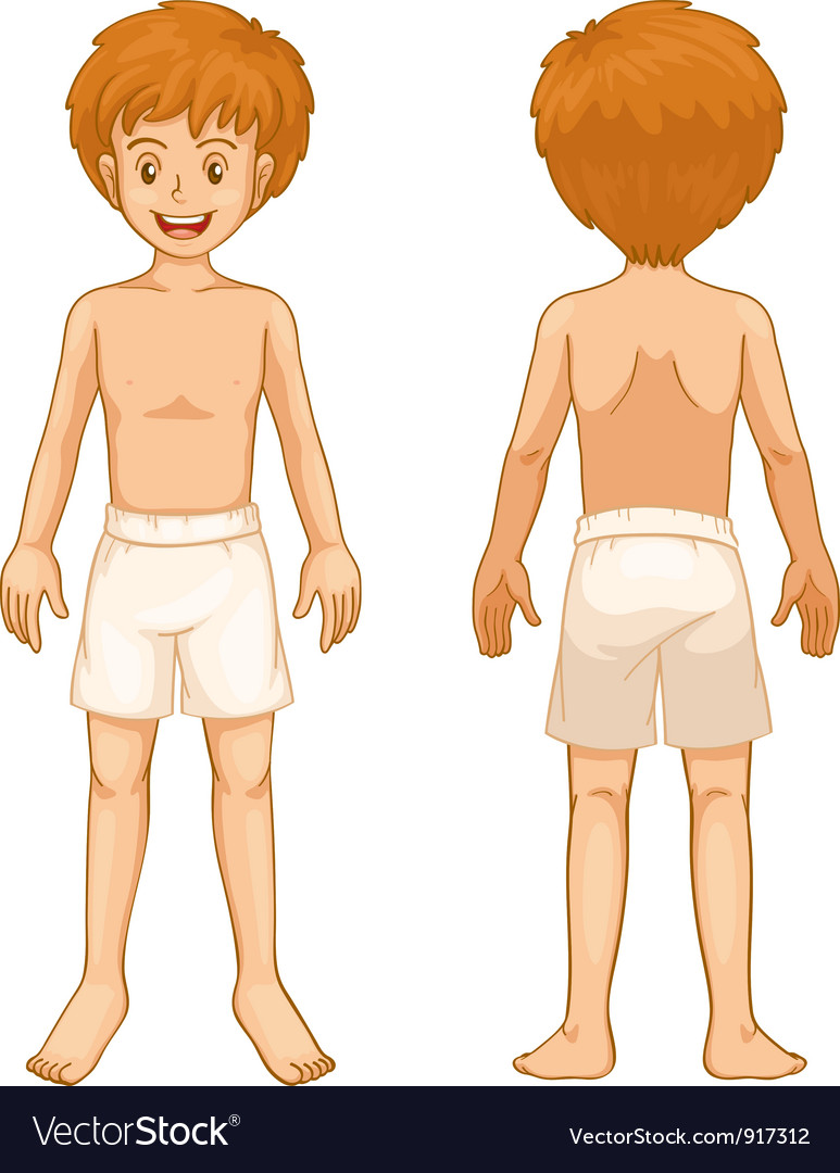 Boy Body Parts Royalty Free Vector Image Vectorstock
