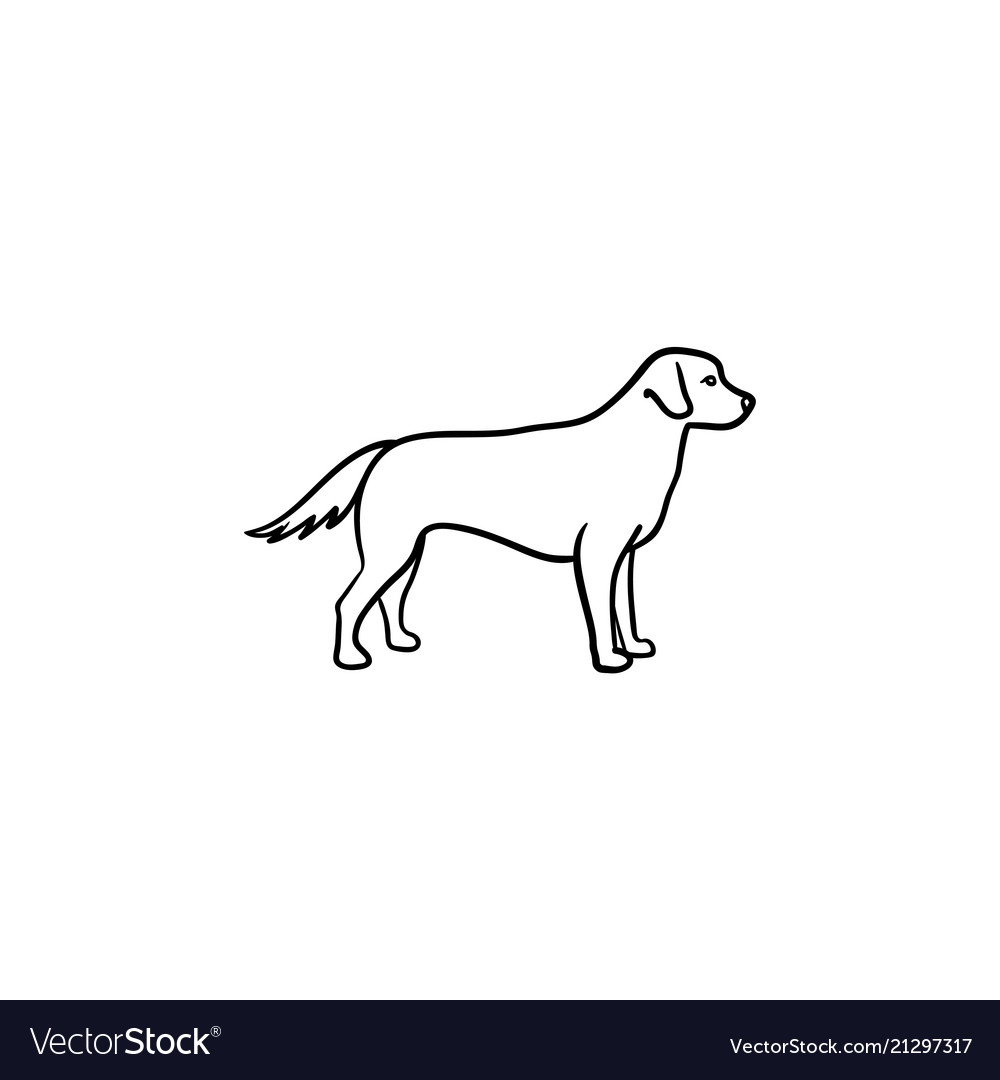 Friendly Dog Hand Drawn Outline Doodle Icon